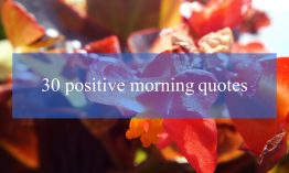 30 positive morning quotes to have an amazing day