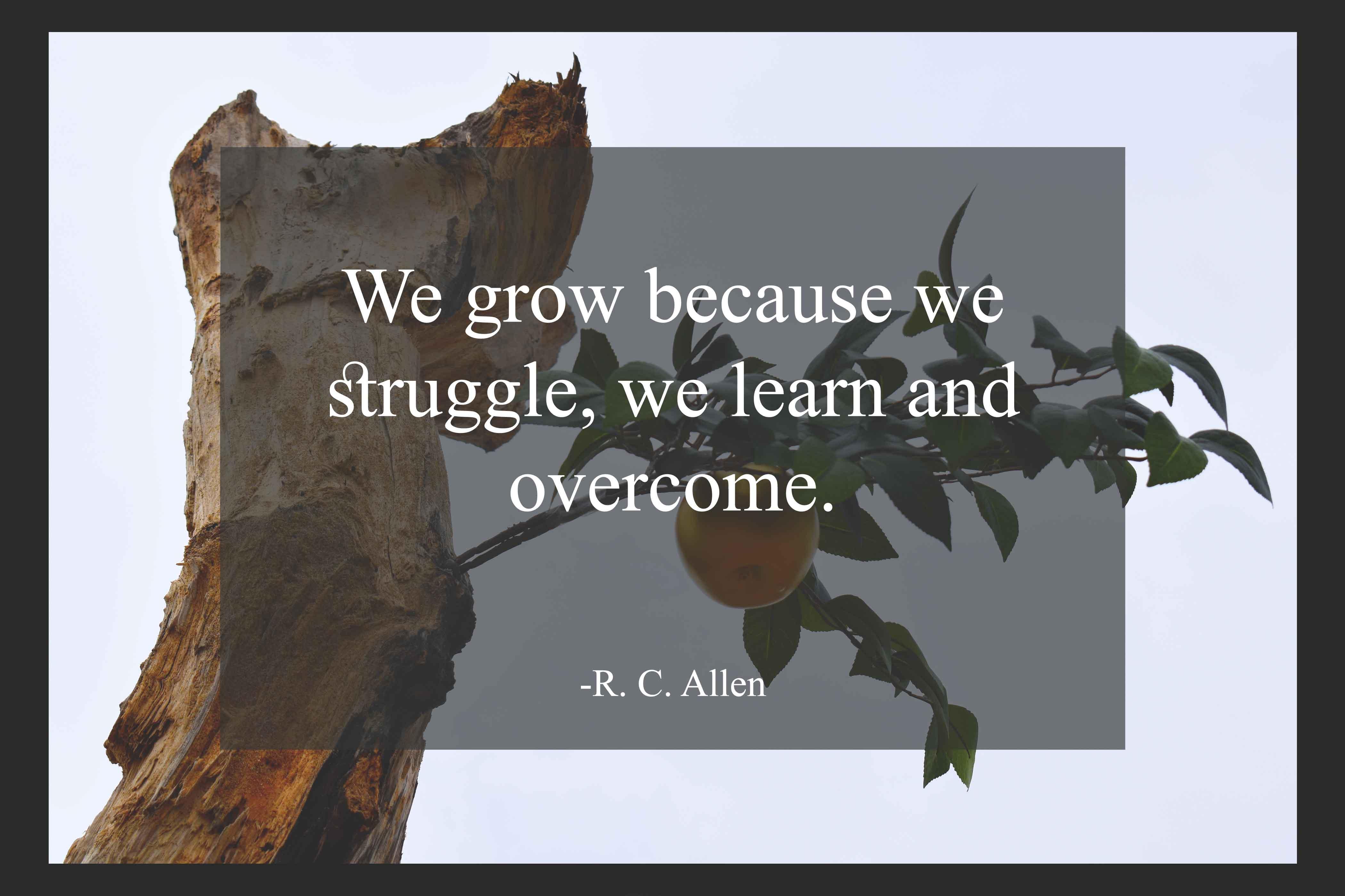 R C Allen struggle quotes