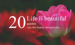 Life is beautiful quotes – see the beauty around you