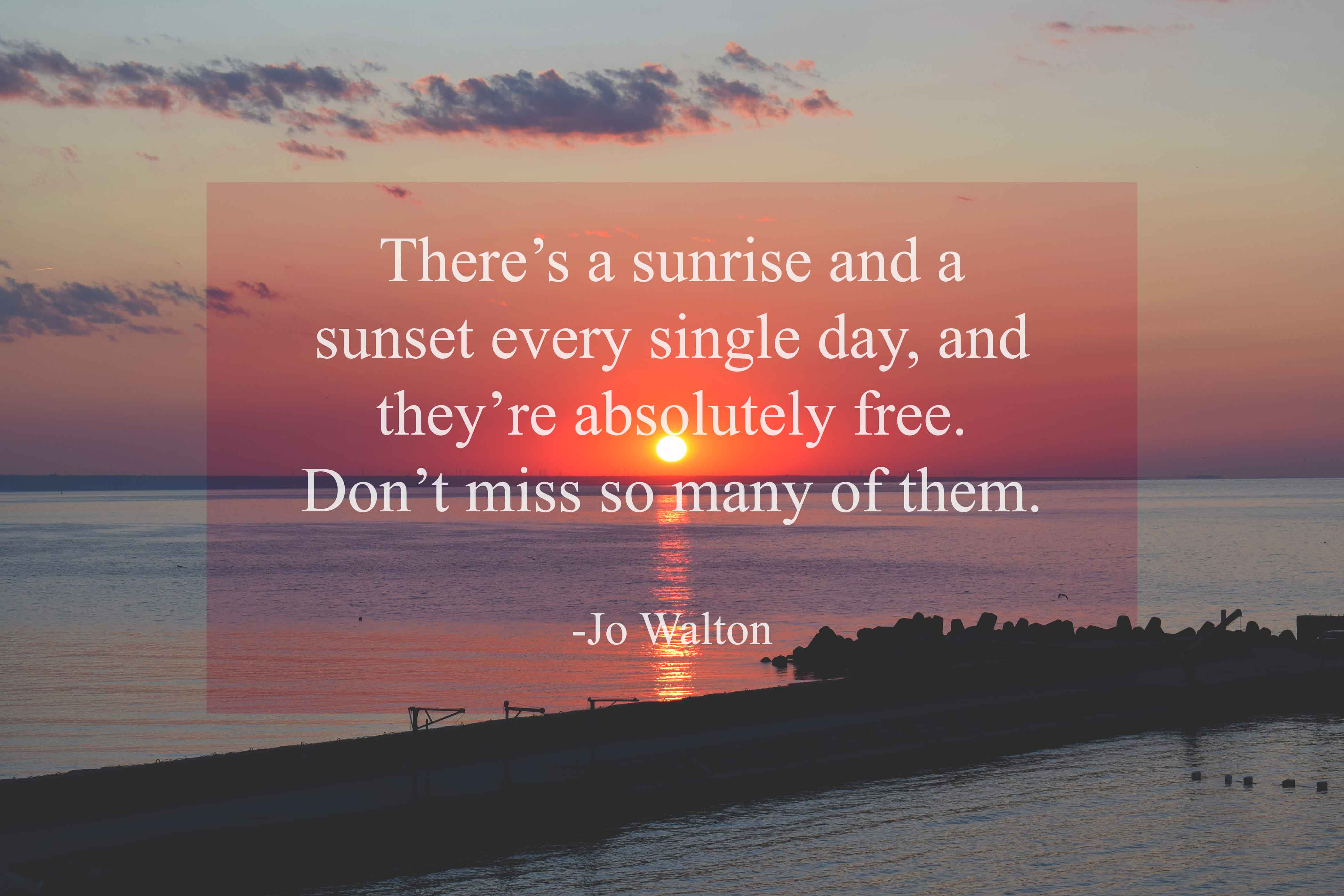 Jo Walton life is beautiful quotes